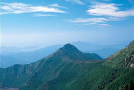 権現山の写真
