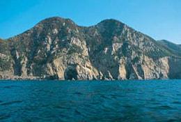御五神島の写真