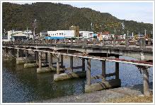 岩松大橋の写真